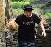 杜海涛抓鸡难走人生路