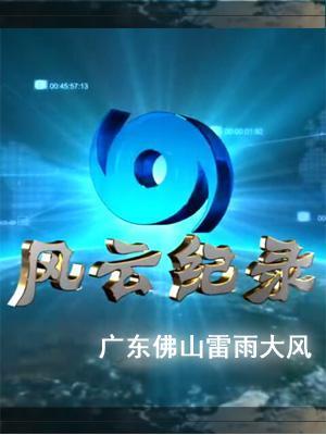 广东佛山雷雨大风•2011