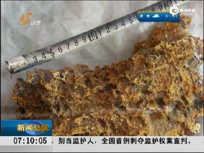 [视频]新疆牧民捡到7.85公斤狗头金 形似中国地图