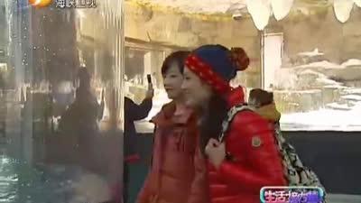 极地新春茶话会 台湾新竹灯会