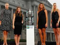 WTA总决赛抽签哈勒普莎娃同组 科娃领衔白组