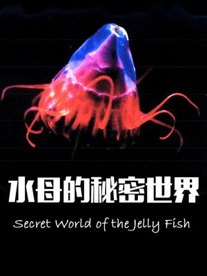 Jellyfish's Secret World
