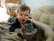 宝宝喜欢猫咪 萌翻了