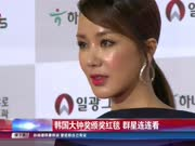韩国大钟奖颁奖红毯  群星连连看