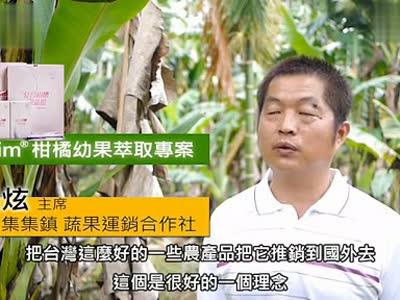 台湾爱唯ivy复合柑橘果蔬粉-介绍2