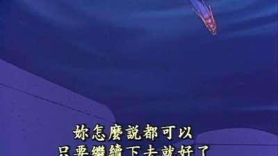 若草四姐妹 21(国语)