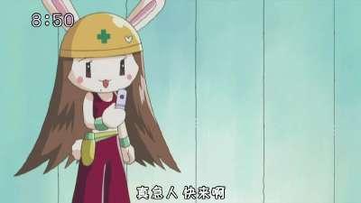 全力兔子24