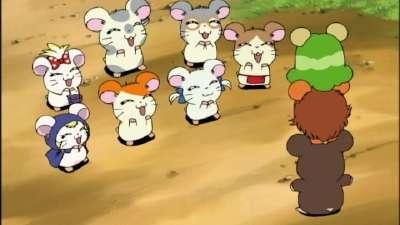 哈姆太郎第二季 国语版09