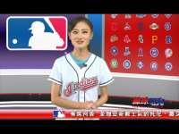 2015棒球周刊第23期