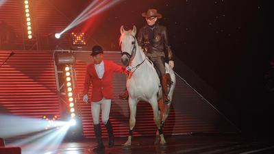 谢贤身骑白马 总决赛前的最后一战