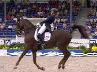 国际马联马术欧洲锦标赛 盛装舞步特别决赛集锦