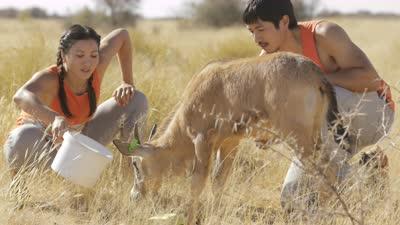 极速团与动物相处和谐 郑佩佩儿子女儿踢馆拿第一