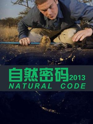 自然密码2013