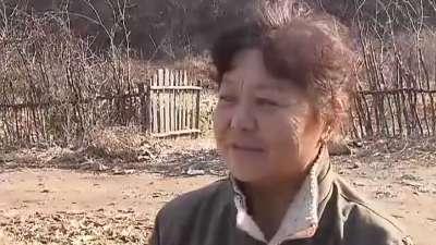 公司经理辞职养猪 80后农业创业
