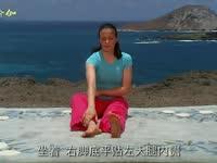 蕙兰瑜伽之特定功效  怀孕中期瑜伽 弯膝扭转式