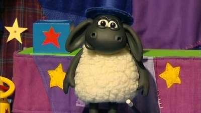 小小羊提米27