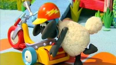 小小羊提米33