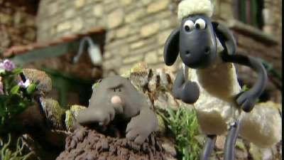 小羊肖恩12