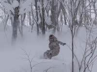 高山滑雪特辑 勇敢的心征服雪山天险