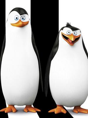 马达加斯加的企鹅 中文版