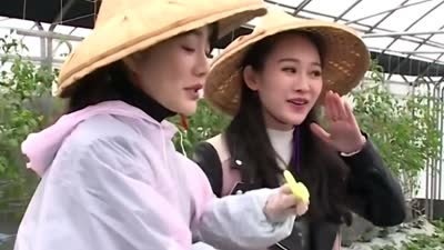 探访天然有机草莓园 台北女孩的时尚态度