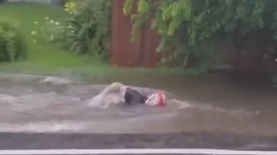 家门口被水淹 国外网友脑洞大开游泳支持奥运