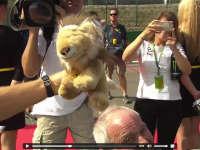 F1比利时站车手巡游:罗斯伯格拿小狮子卖萌