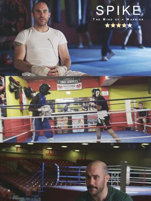 拳王斯派克