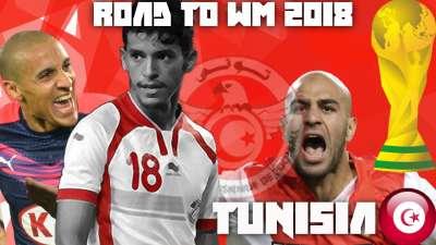 突尼斯2018世界杯晋级之路 12年后重返世界杯