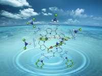 中考化学公开课