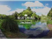 新西兰-蓝泉