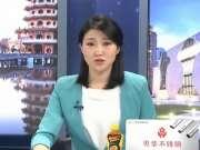 《海峡新干线》20170405:中国国民党主席选举领表 马英九洪秀柱前往慈湖谒陵