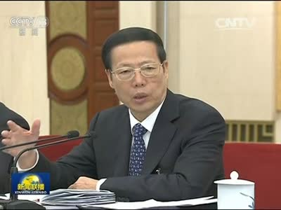 [视频]张高丽参加陕西代表团审议