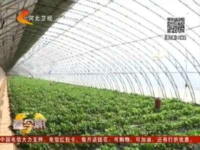 [视频]水果现摘现吃 小心感染诺如病毒