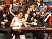 谁说钢琴才有感染力了 听听中国的古筝《云裳诉》