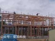 日本工人建房子,不用钢筋只采用木头,这样的房子能抗震?