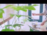 《造物集》 Ⅲ 05夏日彩虹皂