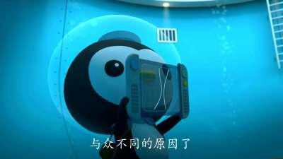海底小纵队第四季18海底小纵队与孤独的鲸鱼