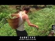 41:农民绝技锁毒蛇
