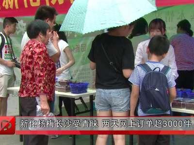 新化杨梅长沙受青睐 两天网上订单超3000件