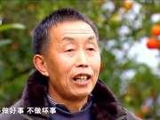 《记住乡愁》20170625:阳坪村 和邻睦族