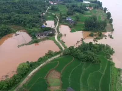 红视频航拍:6月25日湘西州沅水泸溪段汛情直击