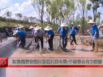 红视频探访湘江新区江滩公园:干部群众奋力清淤