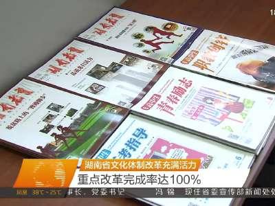 湖南省文化体制改革充满活力 重点改革完成率达100%