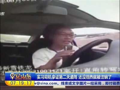 [视频]实习司机拿证第二天酒驾 还没捂热就被注销了