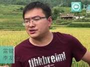 重庆现最高规格稻田 全部安装摄像头