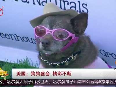 [视频]美国 狗狗盛会 精彩不断