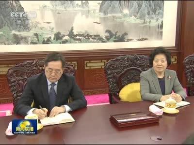 [视频]习近平会见来京述职的林郑月娥