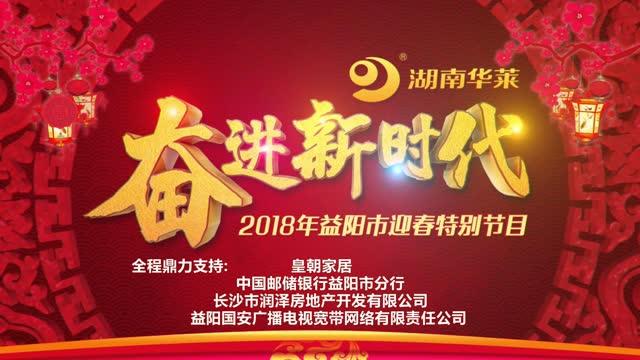 2018年益阳市迎春特别节目宣传片