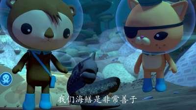 海底小纵队第四季14海底小纵队与联合大行动